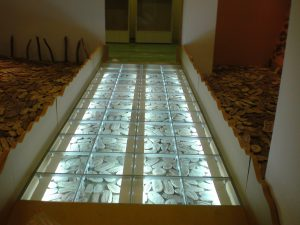 サムネイル: [ガラス床] いのちのたび博物館